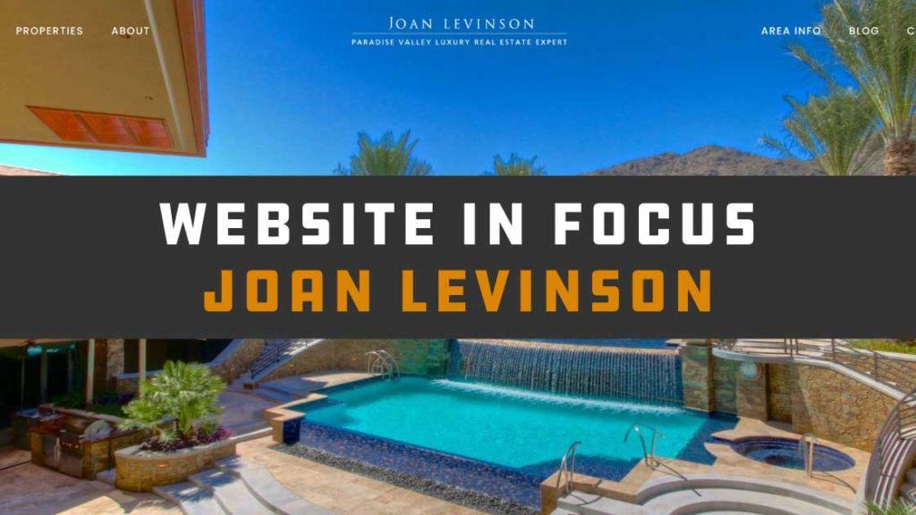 Website in Focus: Joan Levinson